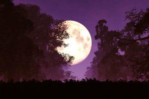 november's super moon